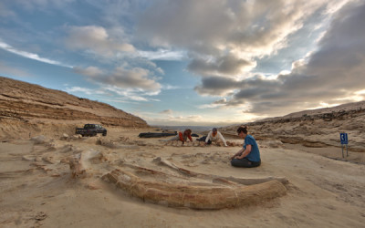 Scansione di sito fossile nel deserto dell'Acatama