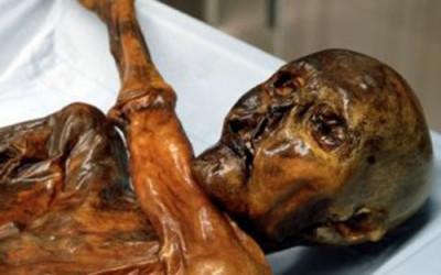 Replica della mummia del Similaun